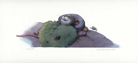 Illustration schlafende Maus